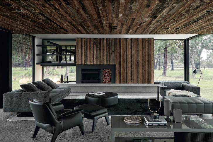 Фото №3 - Лесной царь: модернистский дом под Мельбурном