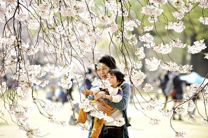 Фото №3 - Коллективное сознательное: как воспитывают детей в Японии