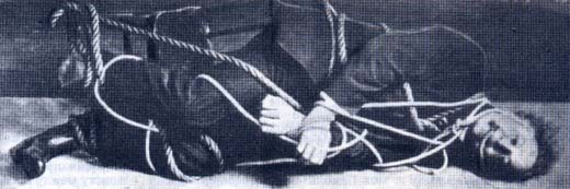 Фото №3 - Гарри Гудини — покоритель оков