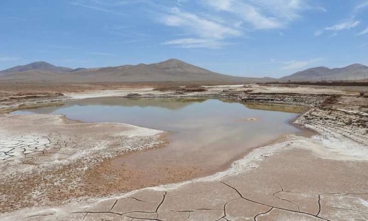 Фото №1 - Дожди навредили микробам Атакамы