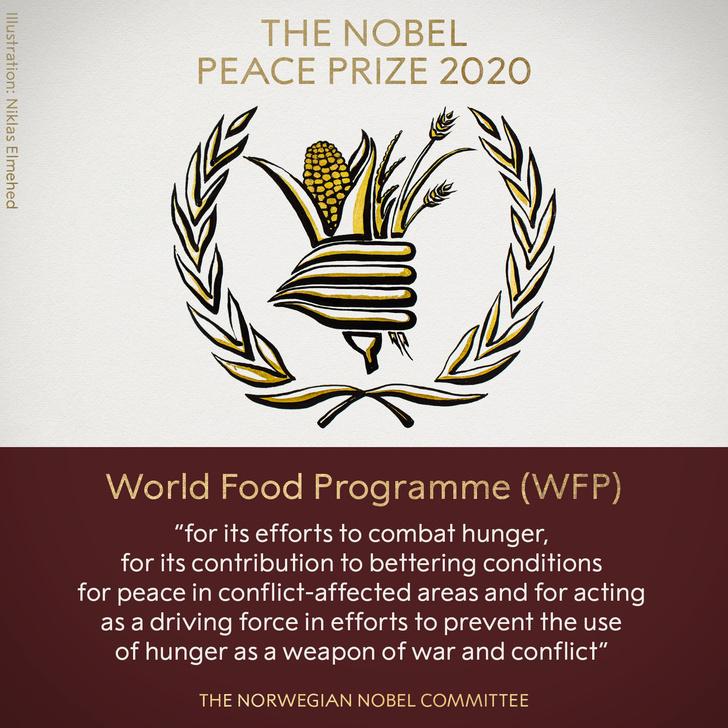 Фото №1 - Нобелевскую премию мира присудили продовольственной программе ООН