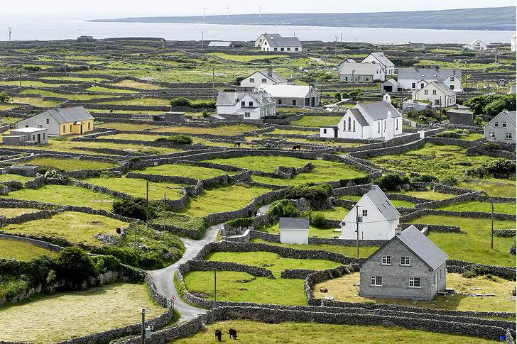 Фото №5 - Голос крови: летучие ирландцы