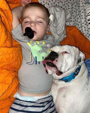Фото №7 - Что будет, если оставить собаку в детской на ночь: видео
