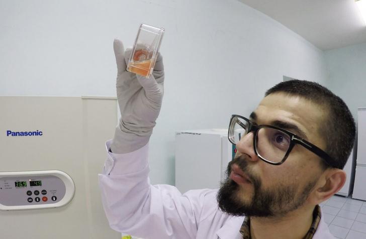 Фото №1 - Новое вещество способно подавлять рост опухолей