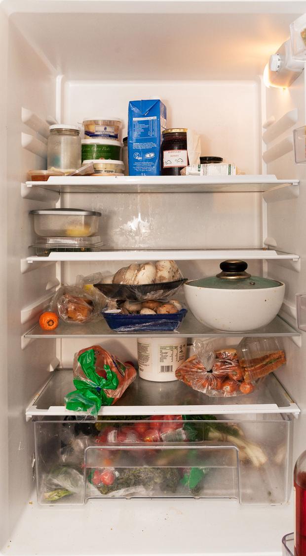 Фото №59 - Что лежит в холодильнике у жителей разных стран: 54 любознательных фото