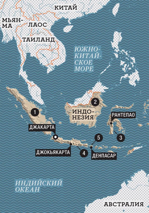 Фото №9 - Буйволы — хранители: как животные стали национальным достоянием Индонезии
