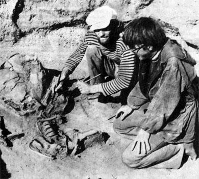 Фото №2 - Пришлите археолога