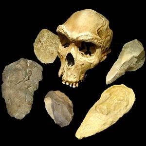 Фото №1 - Оседлый образ жизни отодвинули на 400 тыс. лет назад