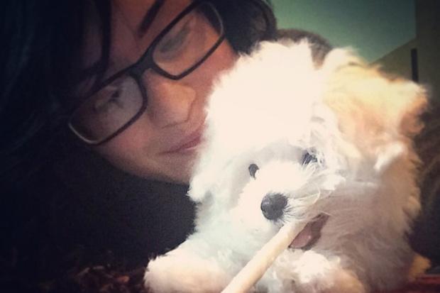 Фото №1 - Деми Ловато завела супермилого щенка