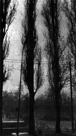 Фото №2 - У подножья пестрых гор