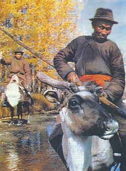 Фото №2 - Цаатаны — имеющие оленей