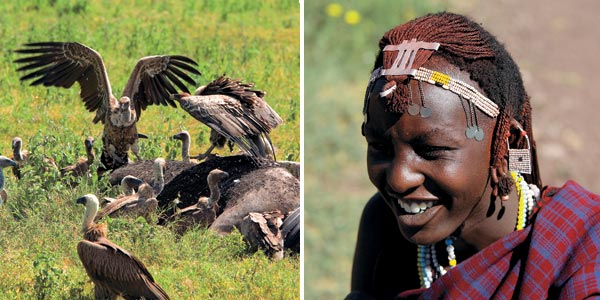 Фото №4 - Жемчужина Танзании