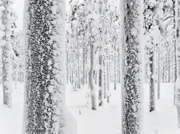Фото №6 - Let it snow: самые снежные страны