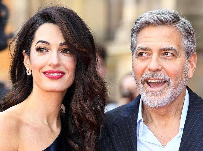 Фото №13 - Самые любопытные факты из впечатляющей биографии Джорджа Клуни