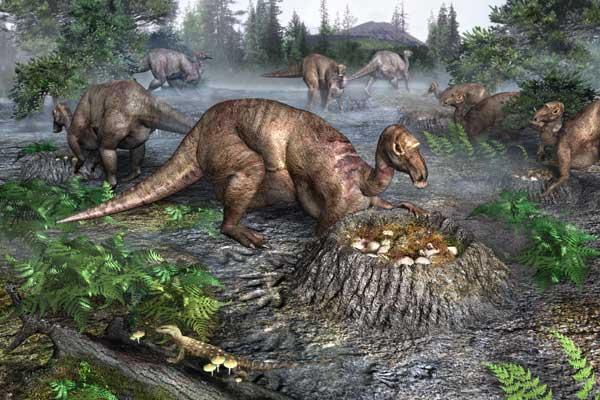 Фото №2 - По гнездовьям динозавров