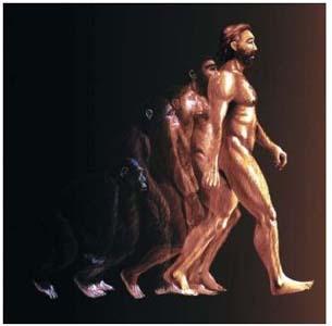 Фото №1 - Homo sapiens'а выдали бактерии
