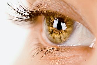 Фото №1 - Почему у людей не бывает желтых глаз?