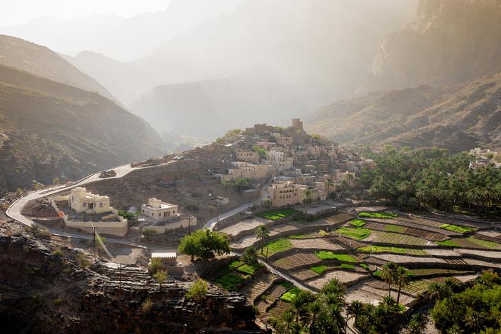 Фото №3 - Если в кране нет воды: афладж как центр жизни в Омане