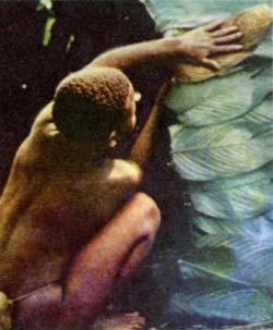 Фото №2 - Люди леса