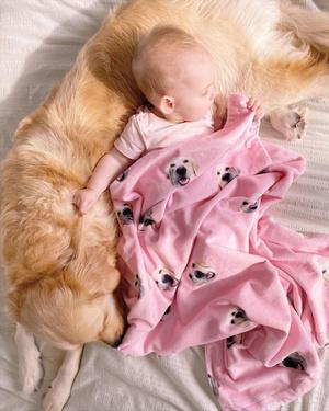 Фото №2 - Огромный пес опекает младенца с рождения: 20 милейших фото