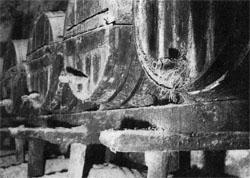 ...Бодеги «Гонсалес Биасс» сохраняются в неприкосновенности как символ незыблемости и преемственности традиций фирмы...