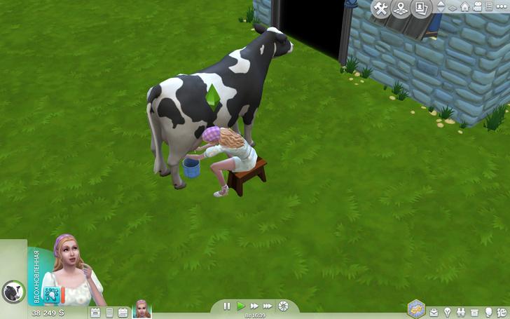 Фото №8 - Скорее качай: новое дополнение «Sims 4: Загородная жизнь» уже доступно ✨