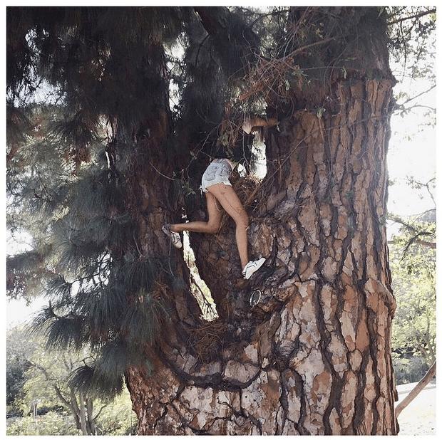 Фото №22 - Звездный Instagram: Сказки леса