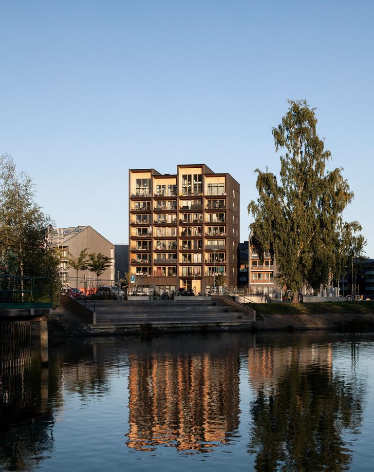 Фото №5 - В Швеции построили полностью деревянную восьмиэтажку (фото)