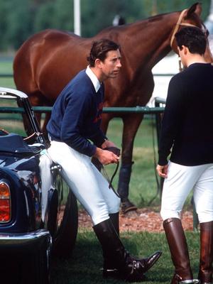 Фото №5 - Трагедия, изменившая жизнь принца Чарльза (и это не гибель Дианы)