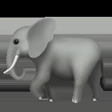 Фото №1 - Гадаем на слониках: какое судьбоносное событие произойдет с тобой в августе