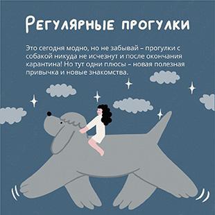 Москвичам предложат взять животных из приюта с доставкой на дом