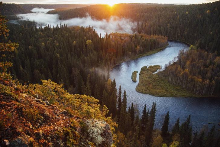 Фото №2 - Лесные развлечения: небанальные идеи для отдыха в Финляндии