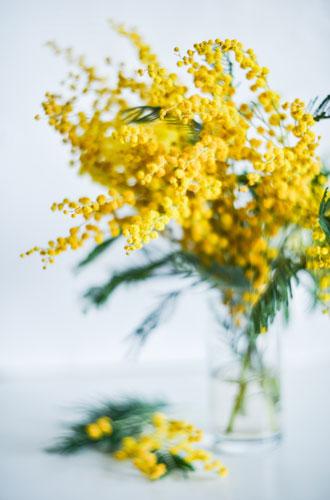 Фото №4 - Какие цветы не стоит собирать в один букет