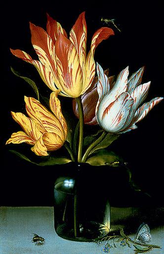 Фото №3 - Как тюльпаны стали национальным достоянием Нидерландов