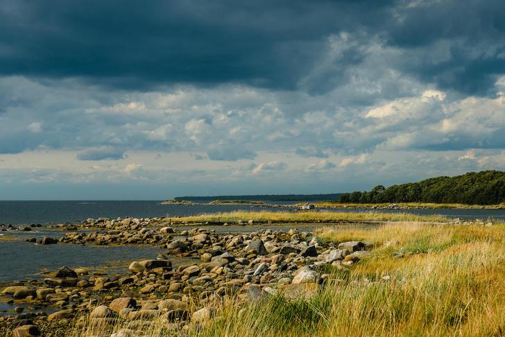 Фото №14 - Суровое очарование Соловков: 15 секретов заповедного архипелага