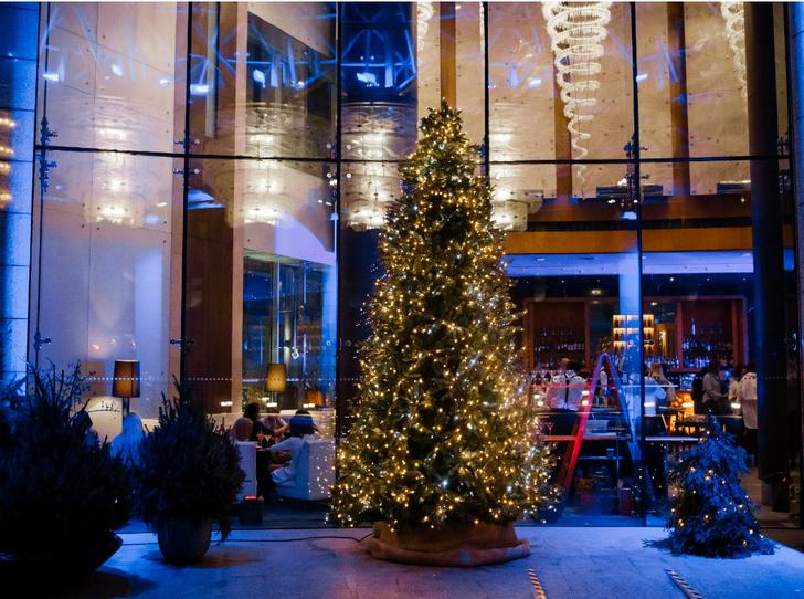 Фото №3 - 3 причины отметить Новый год в Swissotel Красные Холмы