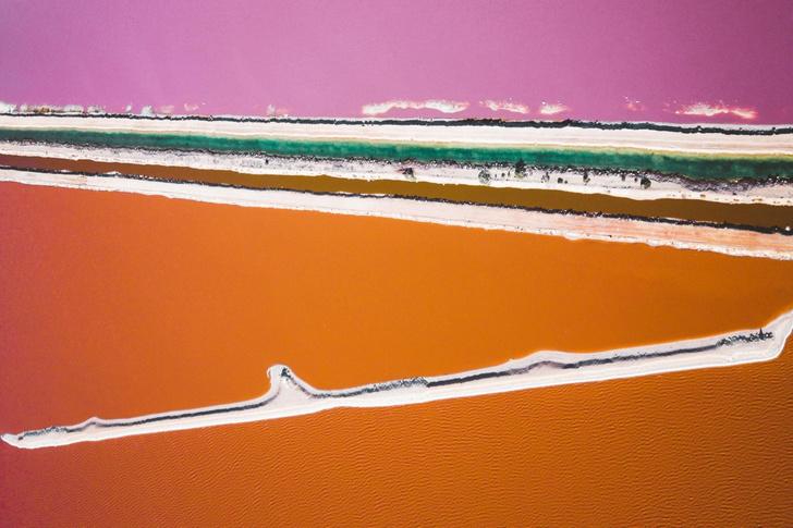 Фото №1 - Цветная лагуна