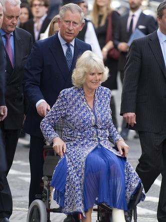Фото №15 - Любовь сквозь годы: 20 самых трогательных фото принца Чарльза и герцогини Камиллы