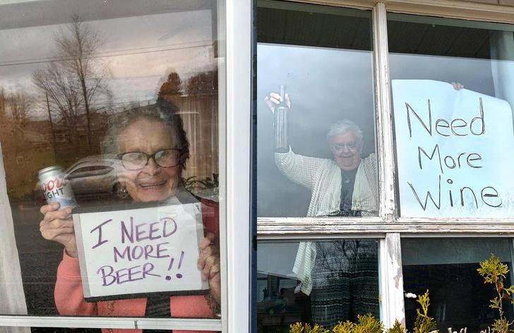 Фото №1 - Пенсионерки из США и Канады прославились в Сети, попросив привозить им на карантине больше алкоголя