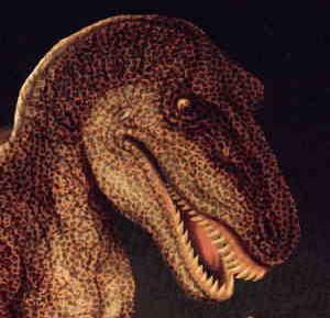 Фото №1 - Самые свирепые динозавры жили в Нигере