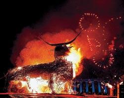 Фото №2 - Шотландцев пламенная страсть