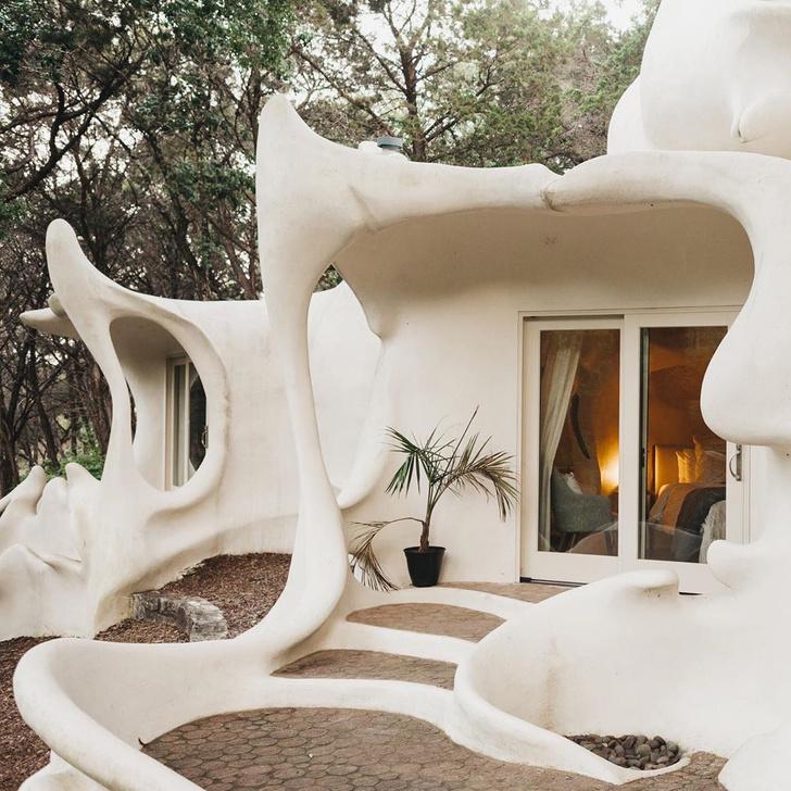 Фото №1 - Сказочный дом с органическими формами в сердце леса