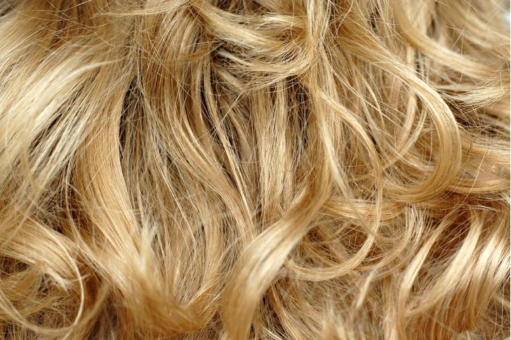 Фото №6 - Вся правда о блондинках... и о мужчинах, которые от них без ума