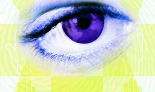 Фото №1 - Человеку будет пересажен свиной глаз