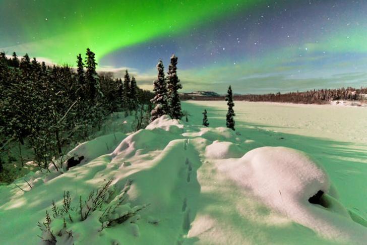 Фото №8 - Лисьи огни: пять фактов о северном сиянии