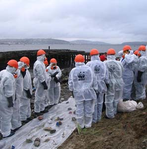 Фото №1 - Белое море спешит на помощь Черному