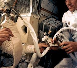 Фото №2 - Как выжить в космосе?
