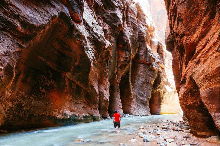 Фото №3 - США бесплатно: самые красивые места в Штатах, куда можно попасть даром