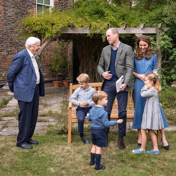 Дэвид Аттенборо и семья Кембриджей