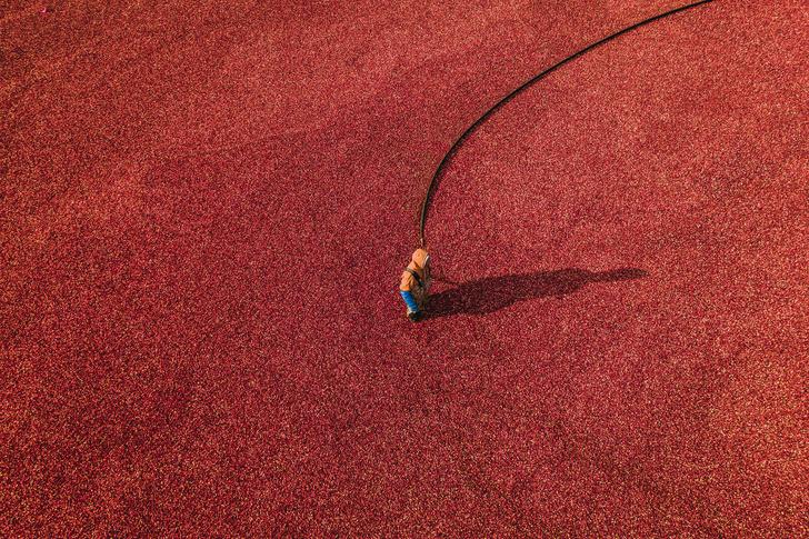 Фото №5 - Дольше, дороже, безопаснее: 5 тревел-трендов будущего
